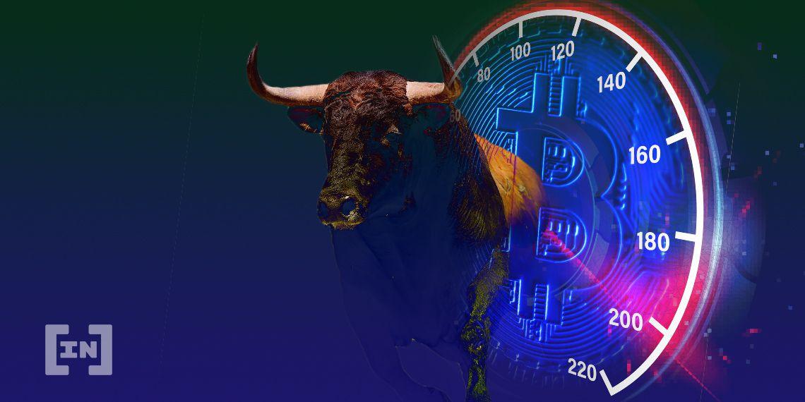 BTC Bitcoin Bull